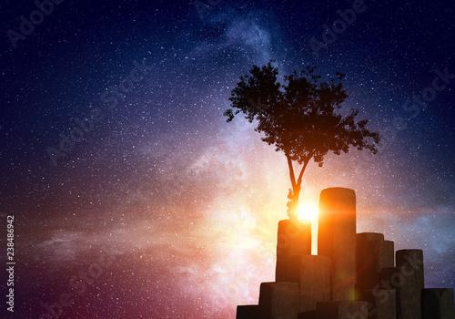 Foto Murales Lonely tree in field