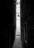 Narrow dark streets of Venice. Black and white. Boots hanging on the rope