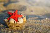 Red starfish and seashells on basket on sand at the beach