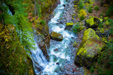 waterfall in forest  Natural Forest , Seattle ,Washington State