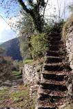 Scalinata e sentiero rustico  tra sole e ombra