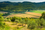 Beautiful agriculture landscape at the outback of Istria, Croatia