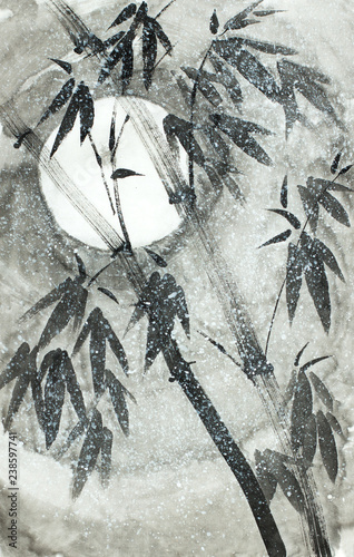 bamboo under the snow