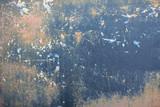 grau beige blau schwarz altes grunge zerkratztes schmutziges rostiges vintage farbig lackiertes Blech Auto Citroen 2CV