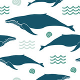 Sea animals background with whales