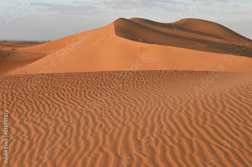 Sandwüste am Morgen