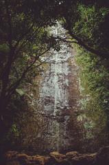 Little water fall in the wild in Hawaii rain forest © mikelju