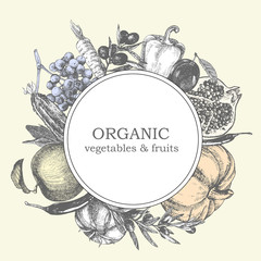 Hand-drawn illustration of vegetables and fruits. Logo design. Vector