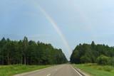 Road, forest, rainbow © Анна Скрипкарь