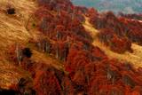 Góry Karpaty