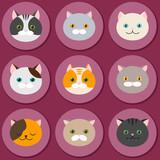 Cat. Set of flat feline head icons. Vector.