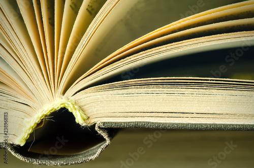 book macro - 238968113