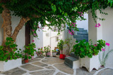 Typical street in Paros - 239006393