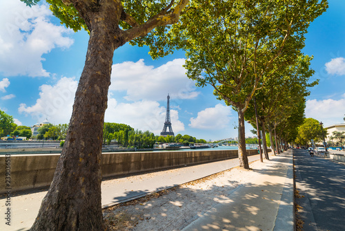 obraz PCV Green trees by Seine River with world famous Eiffel tower on the background