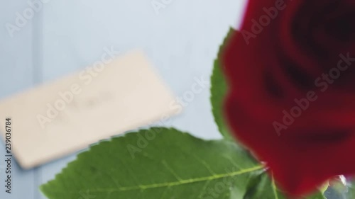 single red roses in glass with 8 march paper card on blue wood table focus pull