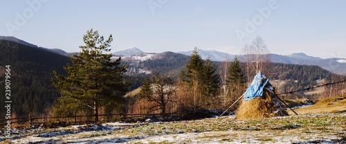 Hutsul Landscape in the Mikulichyn - 239079564