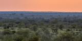 African Savanna plain overview at sunset