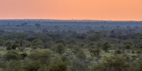 African Savanna plain overview at sunset © creativenature.nl