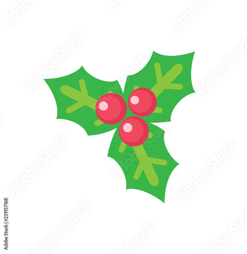Holly Leaves with Red Berries Christmas Decoration - 239157168