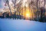 Colorful sunset in countryside at winter - 239239145