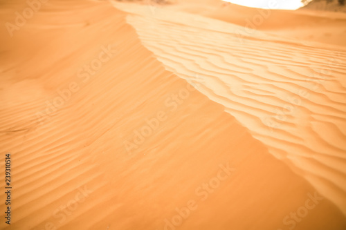 Sand dunes in the desert near Dubai, United Arab Emirates.