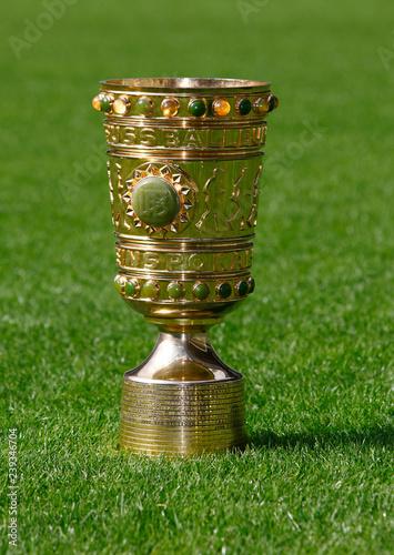 canvas print picture DFB Pokal auf Rasen