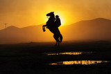 Cowboy puting his horse to stay in two feets at sunset with dust in background © danmir12