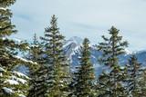 Beautiful panorama of the snow covered mountain range