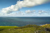 Ireland Landscape with sheeps