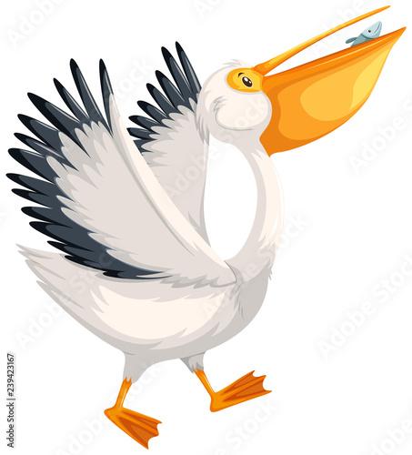 A pelican character walking