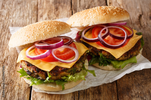 Delicious vegetable hamburgers with vegetarian patty and cheddar cheese close-up. horizontal - 239447940