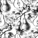 Seamless pattern with hand drawn pear branches - 239450123