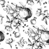 Seamless pattern with hand drawn pomegranates - 239451123