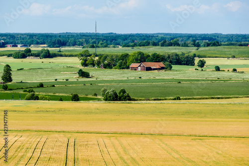 obraz lub plakat rural landscape with green fields and hills, in Sweden Scandinavia North Europe