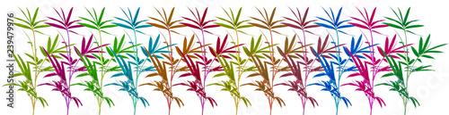 frise bambous couleurs, fond blanc