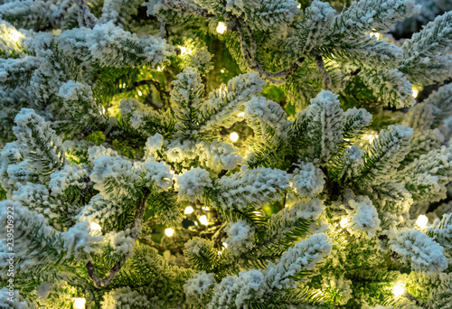 Snow-covered green Christmas tree with a garland.