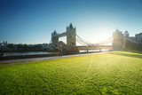 grass and tower bridge in sunny morning London, UK - 239510569