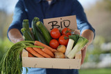 Close up of local farmer holding crate of organic seasonal vegetables with sign - 239516553