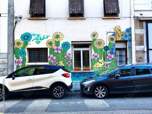 Street art floral, quartier de la guillotière, Lyon