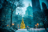 Scenic winter evening view of the glowing lights of a Christmas tree surrounded by the skyscrapers of Midtown Manhattan in Madison Square Park, New York City © lazyllama