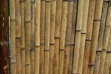 Bamboo wall © YuanGeng