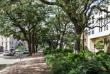 Shady Sidewalk in Savannah