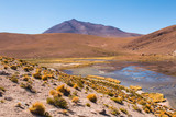 Altiplano of Bolivia near Uyuni salt flats. Amazing lake nature landscape in South America © alexmillos
