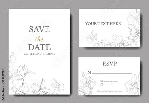 Vector. Orchid engraved ink art. Wedding background card. Thank you, rsvp, invitation elegant card illustration graphic. - 239847790