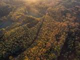 Herbstwald von oben © christian