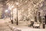winter city park at night