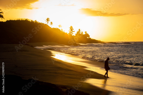 obraz lub plakat Tropical sunset at the beach with palms