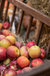 Many red apples on a wooden basket