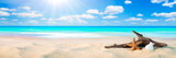 Starfish, Shell, And Driftwood On Sandy Seashore With Tropical Water, Clouds And Sunshine - Beach Holiday Background - 240043390