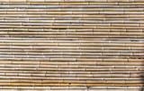 Fototapeta Bedroom - Fundo com bambu © JCLobo
